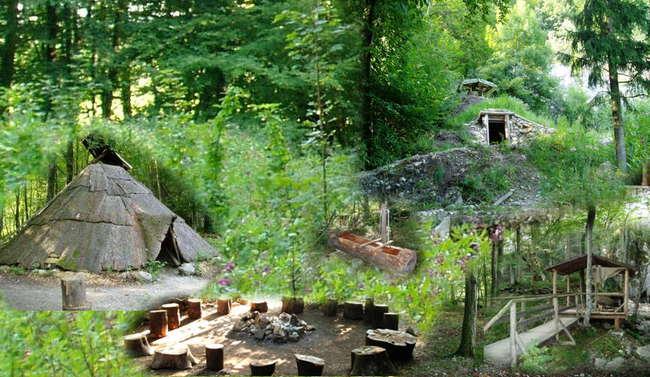 camp dachsbau survival