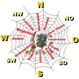 naturmentoring spinnennetz