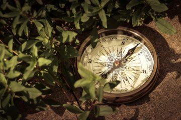 kompass orientierung survival